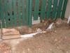 unburied plumbing in ground